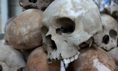 musee royal d'afrique centrale de tervuren